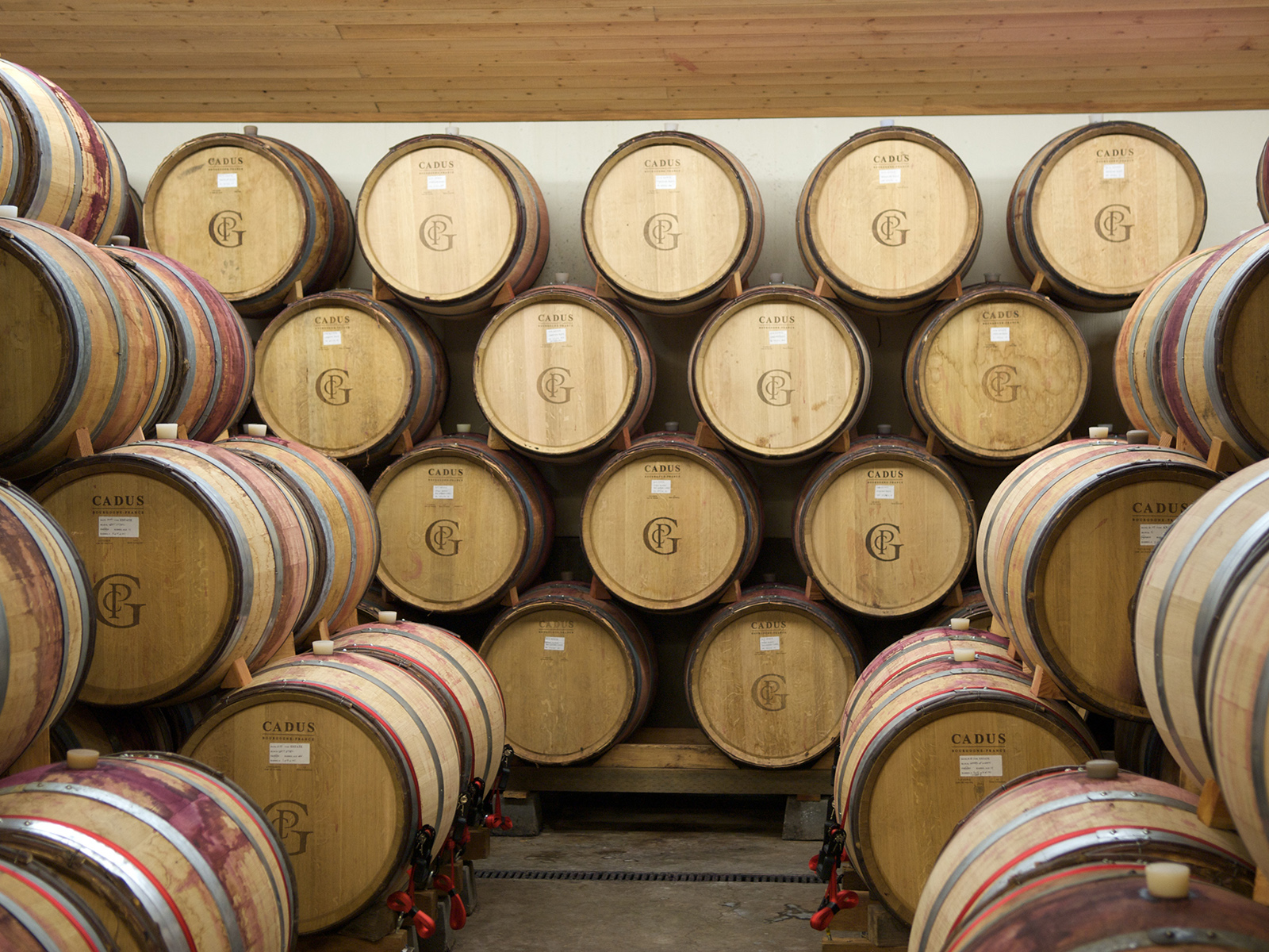 wooden barrels stacked up in the cellars of Patricia Green vineyards in Oregon, USA