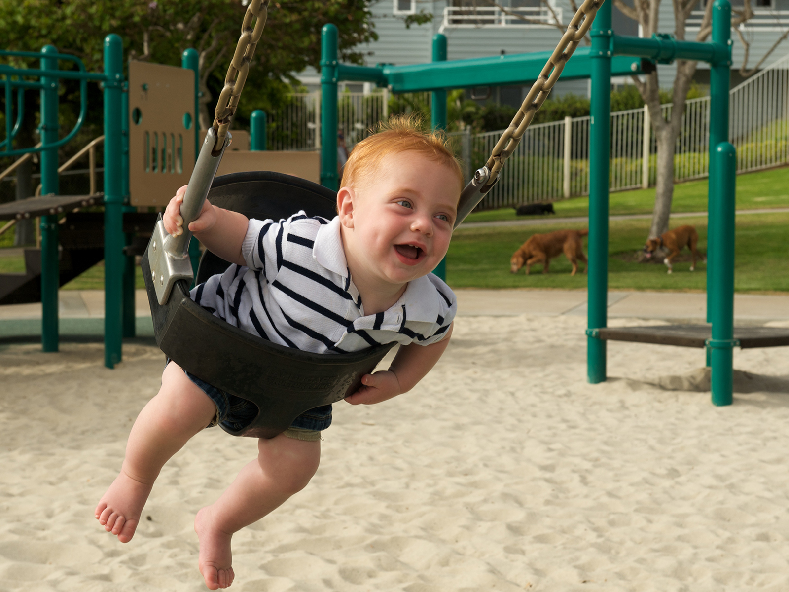 Devon happily flying around on a swingset at the playground in Encinitas, California, USA