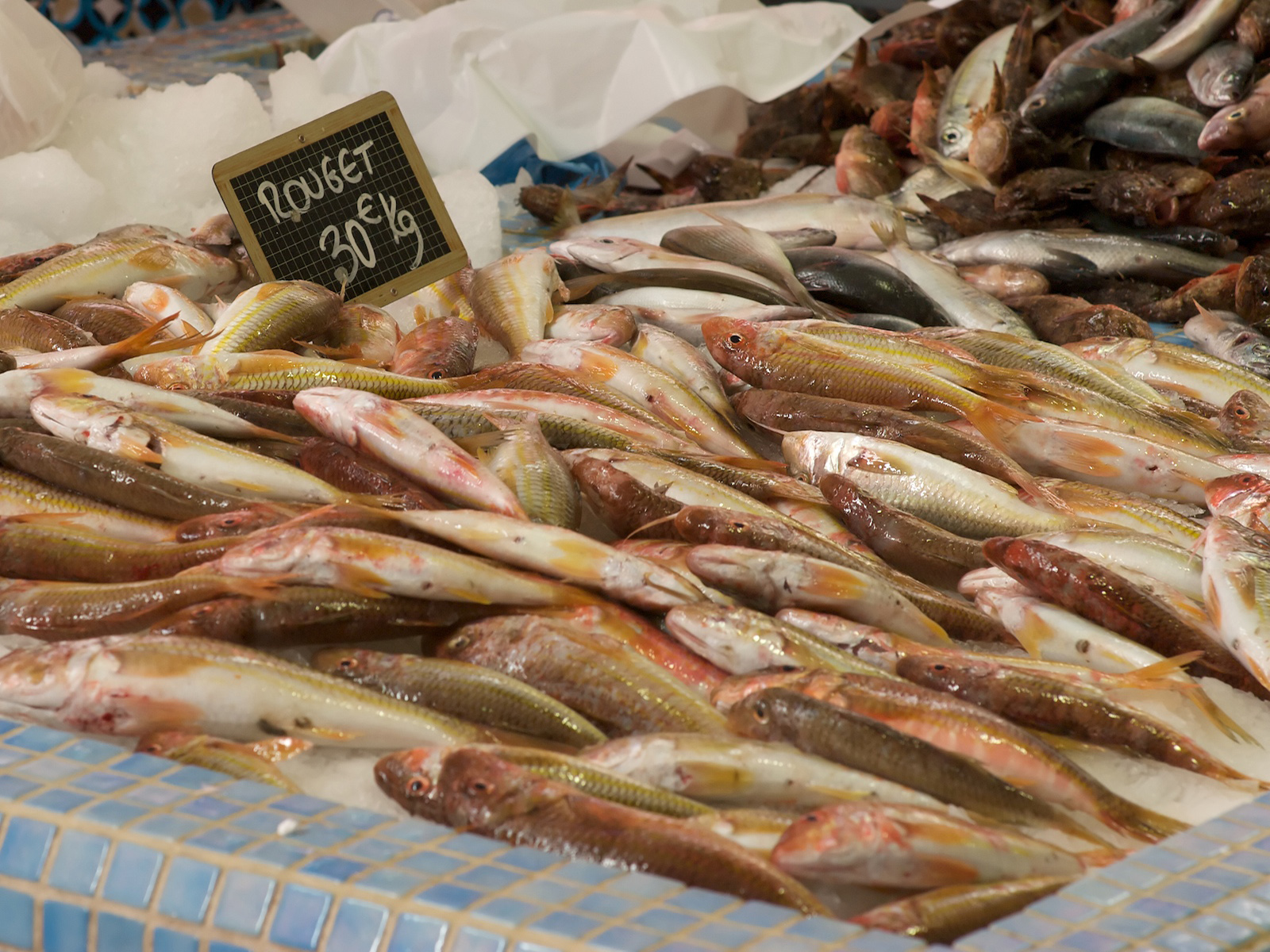 red mullets fresh from the boat displayed on a fishmonger stand at the Marche Forville in Cannes, France